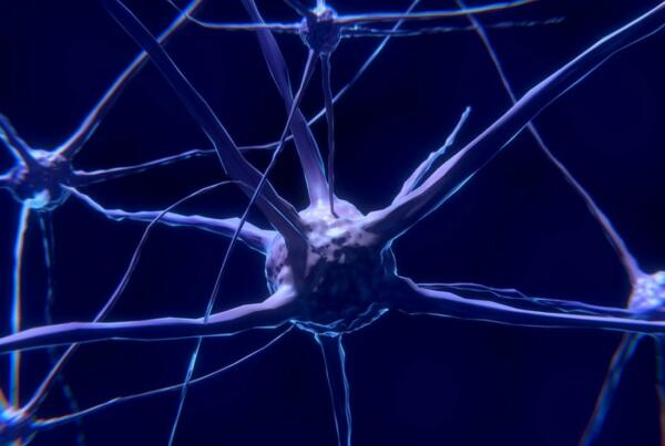 Neurons Release Hypnosis Melbourne Hypnotherapy Counselling Neuropsychology